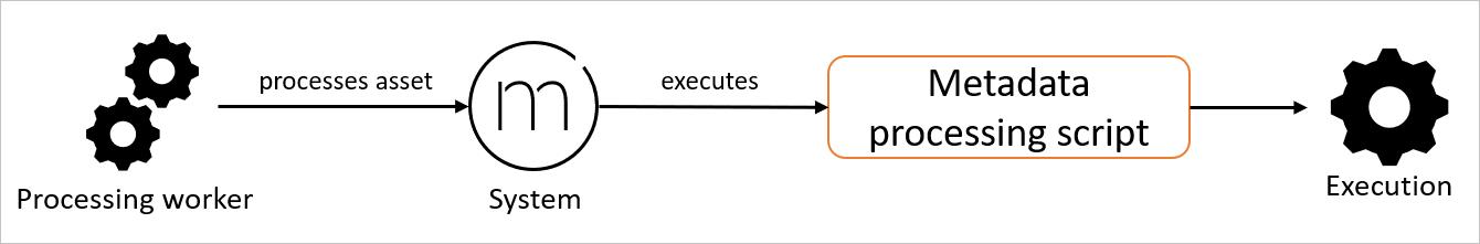 Metadata processing script type