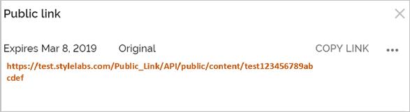 public link URL